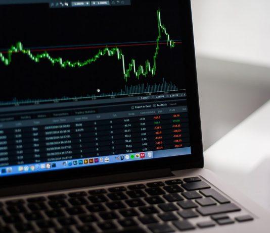 Niche CBD stocks flourish