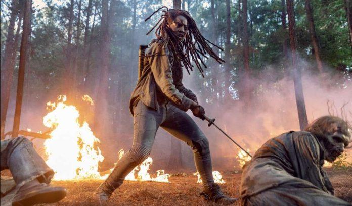 Walking Dead Season 10