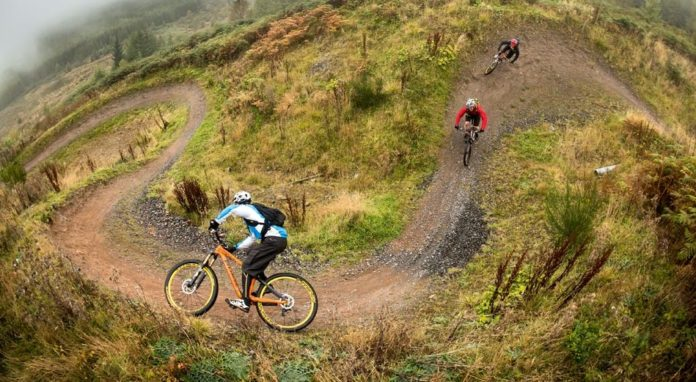 7 Stanes Mountain Biking In Scotland