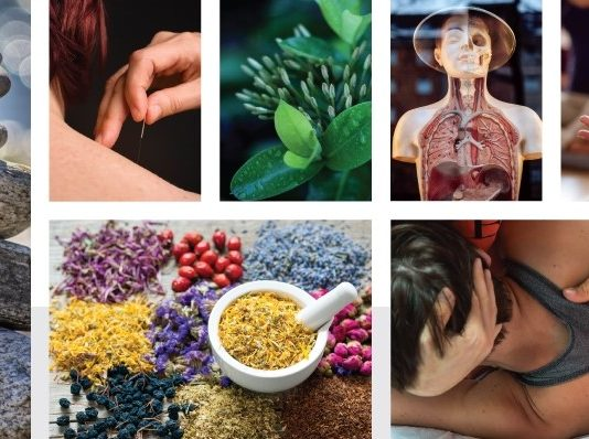Naturopathy vs Conventional Medicine