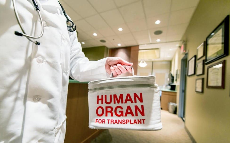 Selling Human Organs Be Illegal