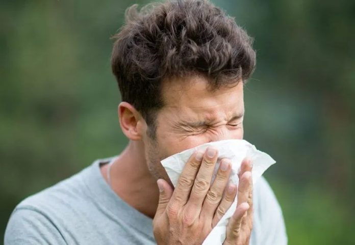Fake News about Coronaviruses